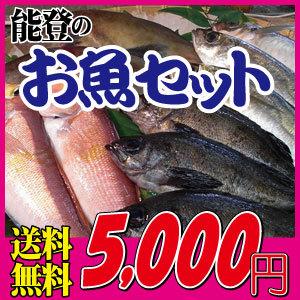 能登の新鮮お魚セット